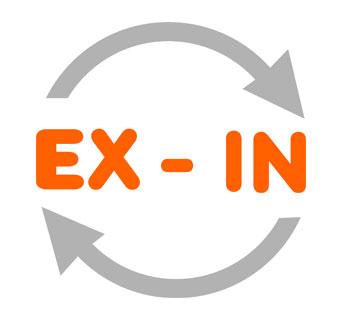 EX-IN_Vektor